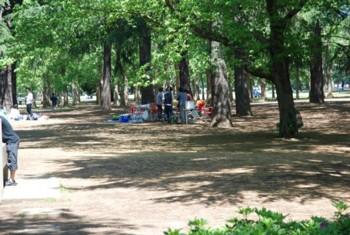 いこいの森公園2.jpg