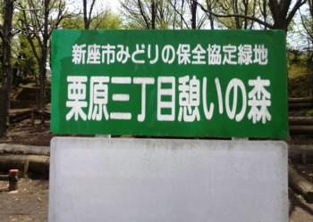 原野ブログ1.jpg